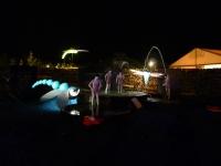 Mulhouse_Folies-flores2012 (5)