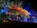 mulhouse__jardin_zoologique_6